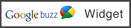 google buzz widge